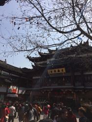 templeshanghai