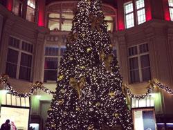 leipzig-christmas-tree