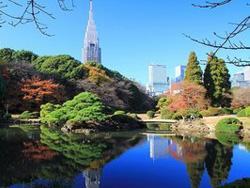 新宿御苑 Shinjuku Gyoen National Garden