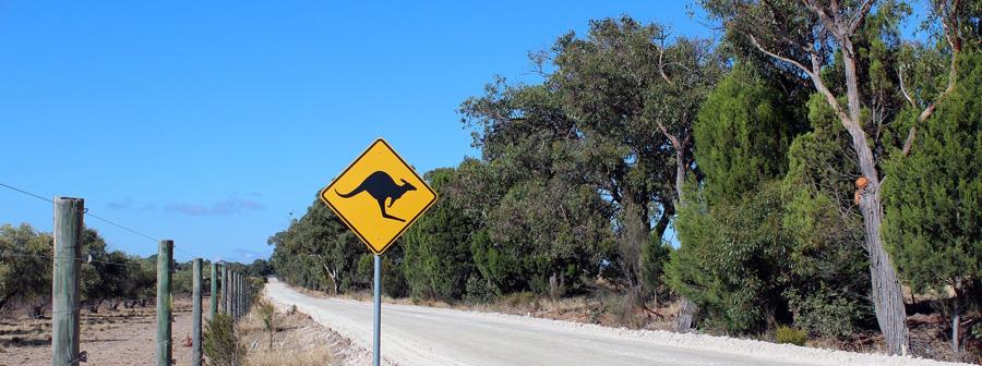 Australian road outback