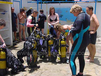 Students on diving excursion