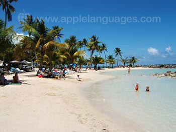 Guadeloupe has magnificent beaches!