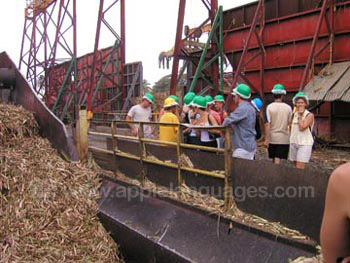 Visit to local sugar refinery