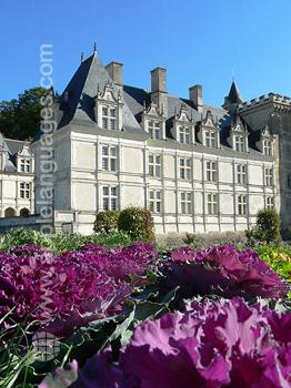 Nearby Villandry Chateau