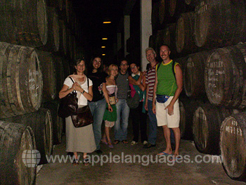 Visit to wine cellar