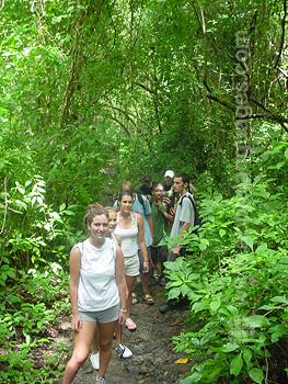 Rain forest trip