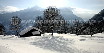 The stunning Swiss Alps in winter!