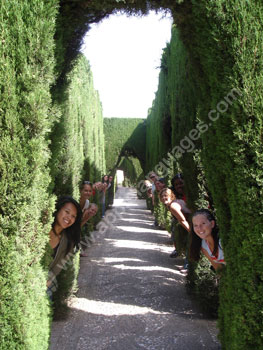 Exploring gardens on excursion