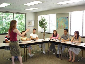 Dynamic teachers in our school