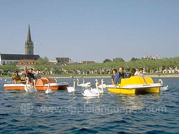 Students boating in Lake Constance