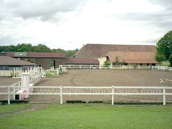 Nearby riding stables