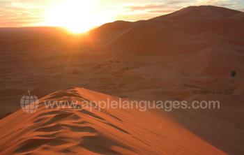 The Sahara is a short trip away