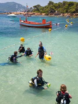 Students learning to scuba dive