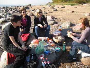 Students enjoying a picnic at the beach