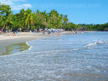 The stunning white sand beaches of Manuel Antonio