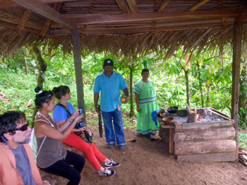 Cocoa Plantation Tour