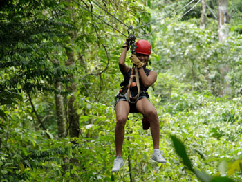 Zip line on Canopy Tour