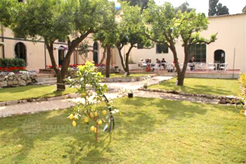 The school gardens and patio