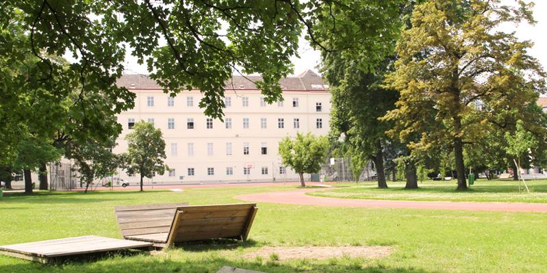 German summer school, Vienna