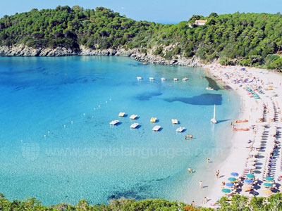 Elba has stunning beaches