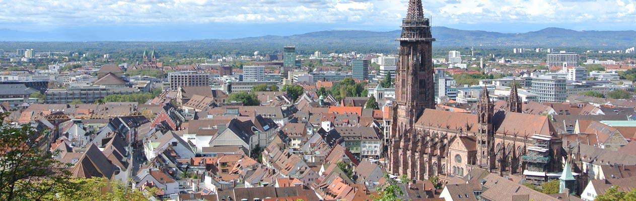Freiburg rooftops and cathedral, Germany